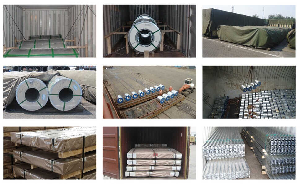 Galvanized Steel Coils For Roofing