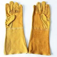 Picture of Long Leather Gloves  ADTO-G11