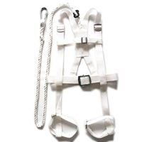 Picture of High Aerial Double Shoulder & Crotch Harness ADTO-F03
