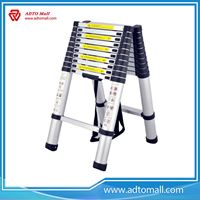 Picture of Extend A Step Telescopic Ladder