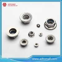 Picture of Hex Flange Nut White or Yellow Zinc Plated