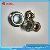 Picture of M16 DIN6923 Galvanized Plating Flange Head Nuts