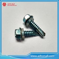 Picture of Carton Steel Hex Washer Head Self Drilling Screw