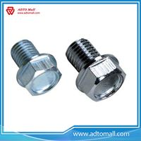 Picture of Galvanized Flange Bolts and Nuts