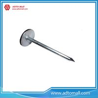 Picture of Q195 Steel Roofing Nails