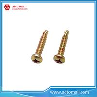 Picture of Slotted Machine Screws