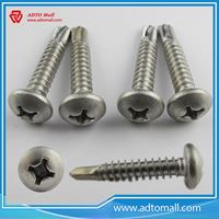 Picture of Stainless Steel Screws