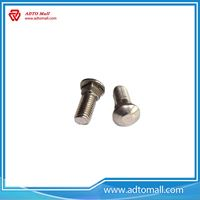Picture of Stainless Steel Guardrail Splice Bolts