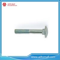 Picture of Blue White Galvanized Carriage Bolts