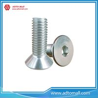 Picture of Flat Bolt