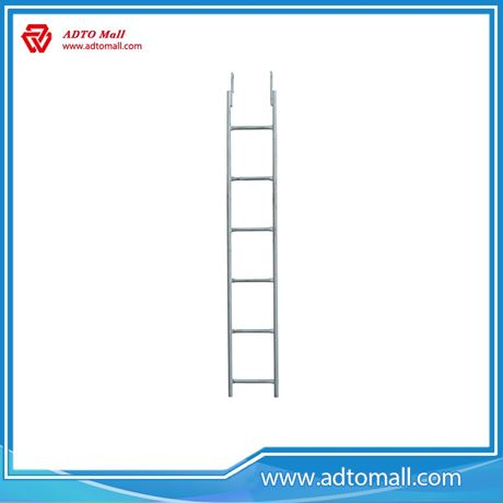 Picture of Monkey Ladder